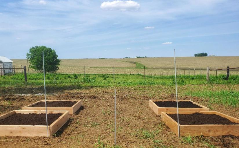 Veggie Garden Design andConstruction